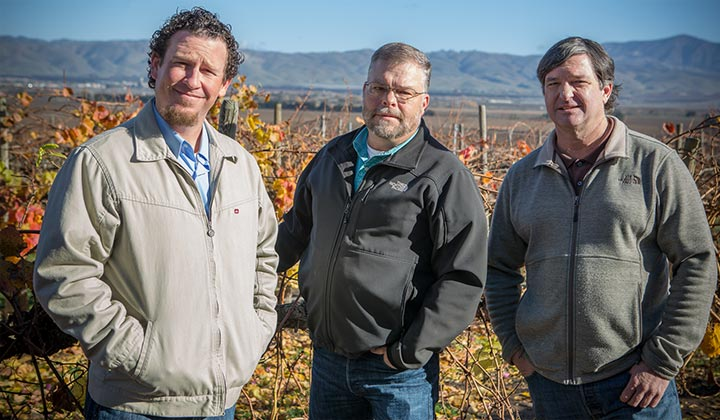 Dustin Rubbo, Daryl Salm and Scott Strom standing in the vineyard.